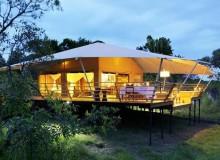 serengeti-bushtops-123